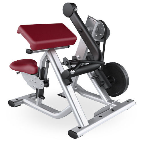 Gym Seated Biceps Curl Machine With Adjustable Cushions Custom Color Available